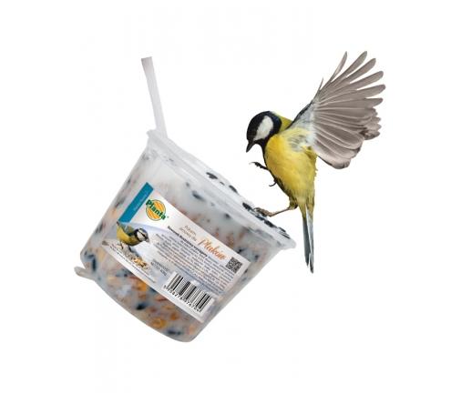 Zapraszamy ptaki